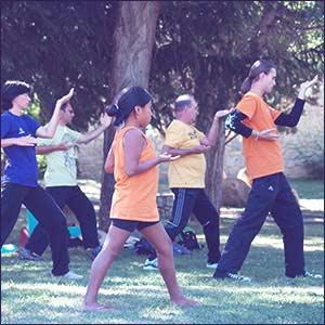 Chindai sport zen